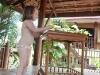 luang-chumni-village-006