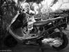 moto-alexis-001